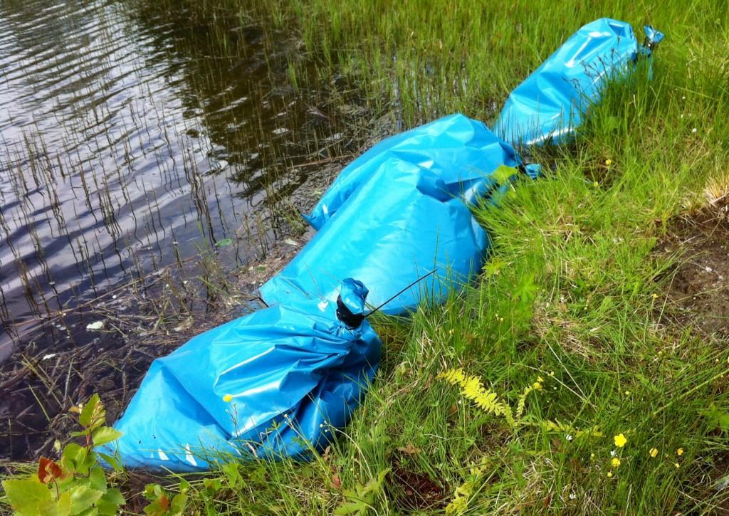 Fisken fraktar vi i tjocka sopsäckar med vatten i som syresätts innan man försluter påsen. Påsen sätts sedan i en plastback.