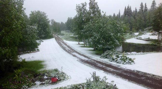 Och snön lyser vit på marken…
