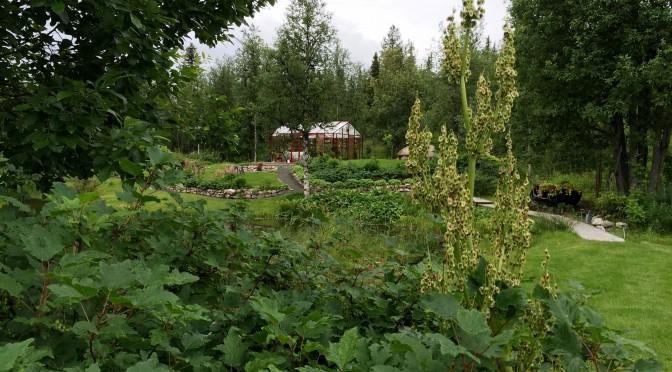 Augusti i Nyborg – fortfarande i försommarskrud