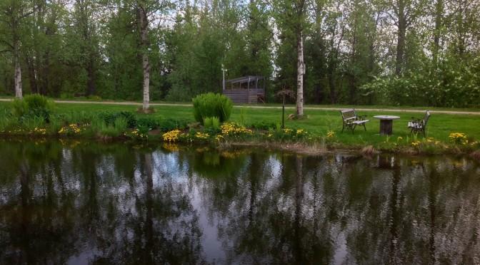Det växer och frodas även i Lappland