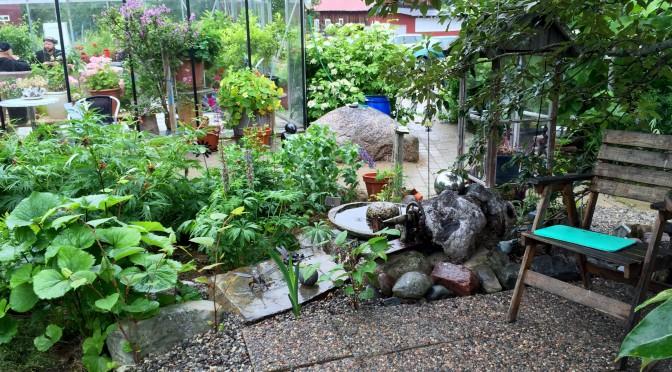Trädgårdsrajden – Öppen trädgård hos oss och i Slagnäs